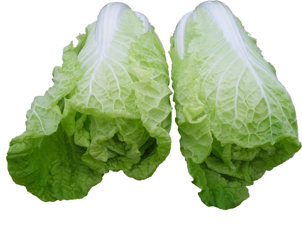 蔬菜 975_771